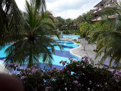 View from Room 242 at Le Grandeur Palm Resort in Senai Malaysia