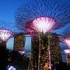 2018-03-17_Singapore_1354_Gardens By The Bay_Light Show.JPG