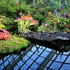 2018-03-17_Singapore_1332_Gardens By The Bay_Cloud Forest.JPG