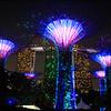 2018-03-17_Singapore_1357_Gardens By The Bay_Light Show.JPG