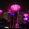 2018-03-17_Singapore_1362_Gardens By The Bay_Light Show.JPG