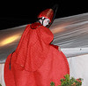 A dancer attempts to hop down to the backstage area in this very large costume.