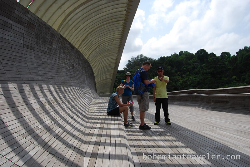 Our group on the Henderson Waves Bridge.