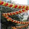 Chinese Lanterns Overhead