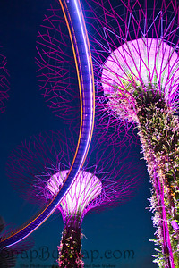Singapore Super Tress During the Blue Hour