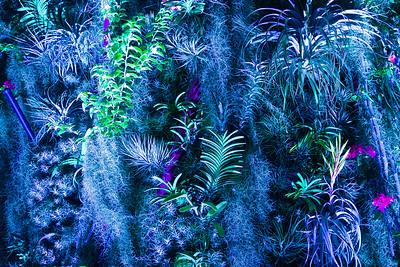 Avatar Plants
