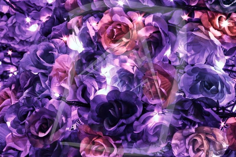 Illuminated Diwali Flowers