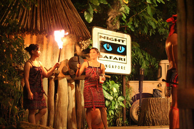 Night Safari and Zoo