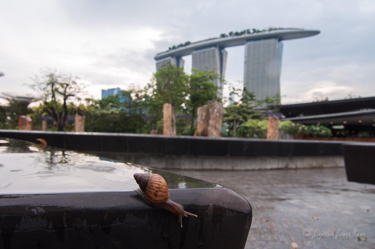 Snail and Marina Bay Sands