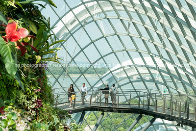Singapore, Gardens by Bay.