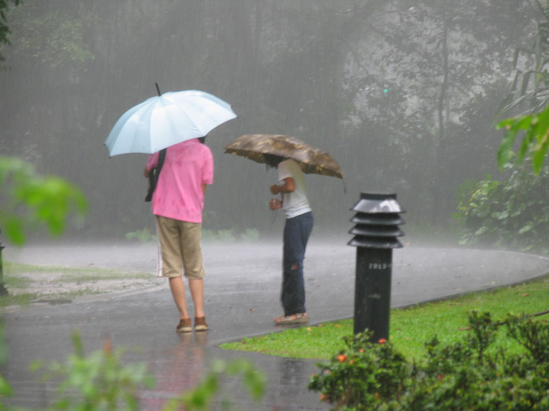 Mother and child venture out from cover hoping their umbrellas will keep them dry ...