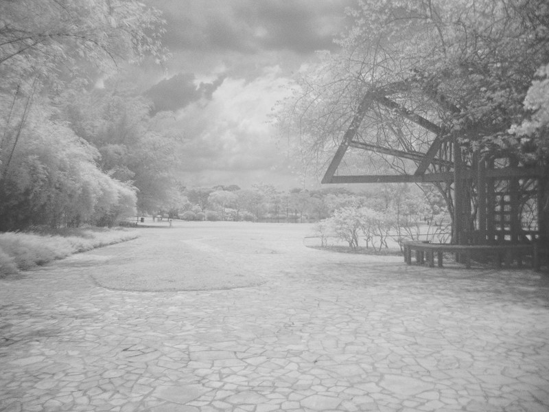My favourite quiet spot... Hidden away at the back of the botanic gardens.  Taken with an IR filter to get this strange look