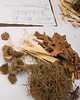 Modern Chinese Prescription with Ancient Ingredients<br /> China Town - Singapore Nov 2006<br /> © WEOttinger, The Wildflower Hunter - All rights reserved<br /> For educational use only - this image, or derivative works, can not be used, published, distributed or sold without written permission of the owner.