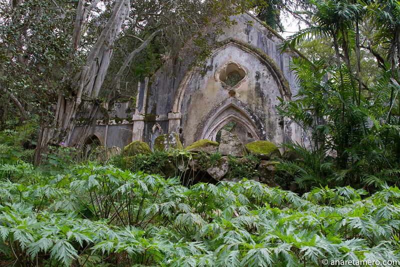 Falsa ruína