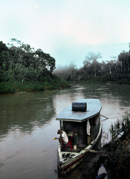 We lived on this boat in the Amazon. I call it The African Queen.