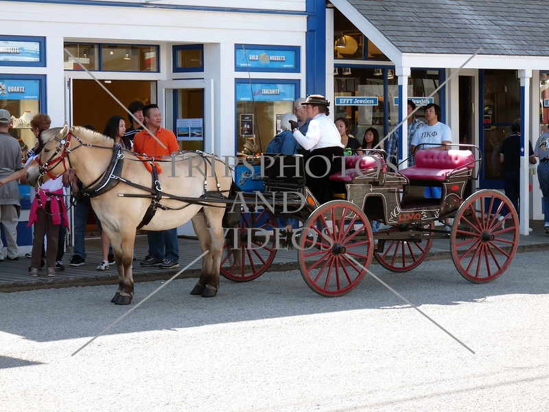 A horse drawn carriage in the town of Skagway, Alaska.