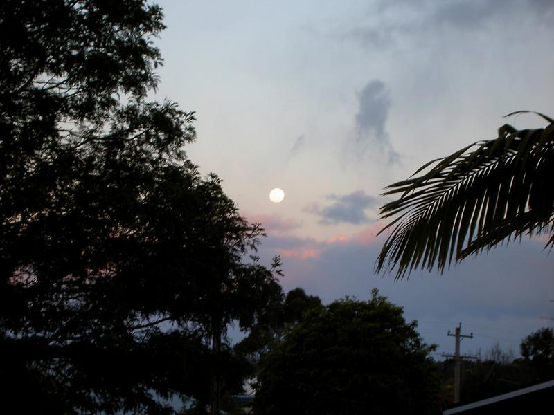 Moon in Eden