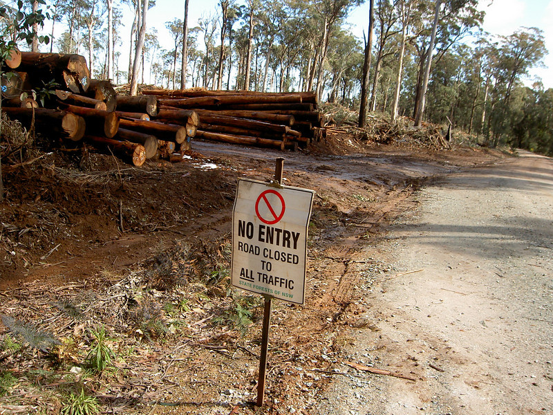 Devastated forests outside Bombala.  No entry because we don't want you to see the devastation.