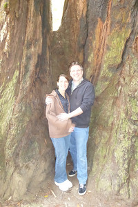 Diane and Mike at the base of  huge redwoods.