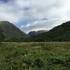 Looking towards Glencoe from Glencoe Village