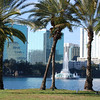 Skyline of Orlando, Florida from Lake Eola