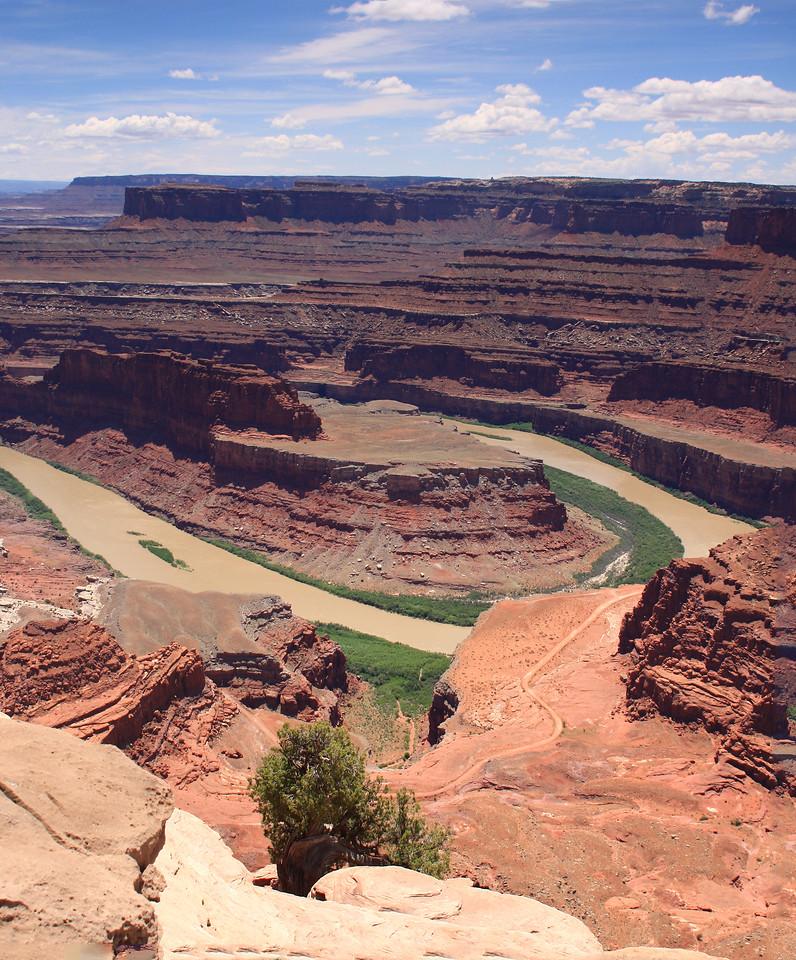 Dead Horse Panorama
