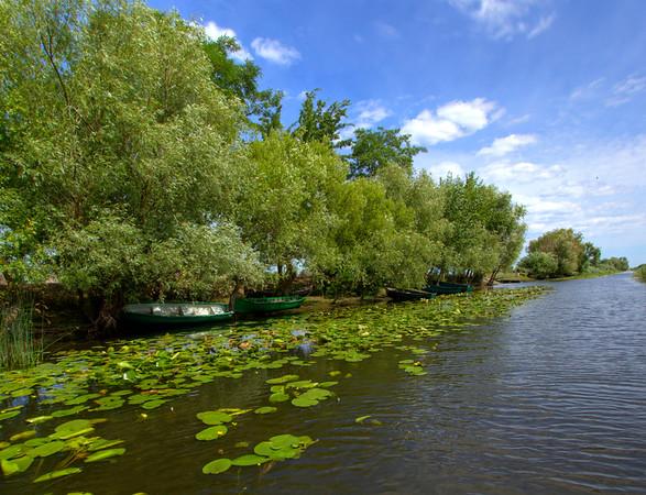 The Danube Delta, Romania