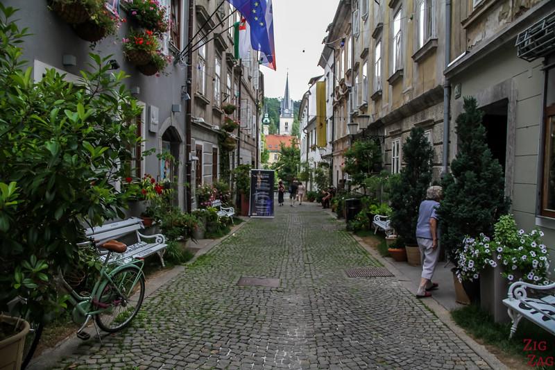 Rue pavée dans Ljubljana