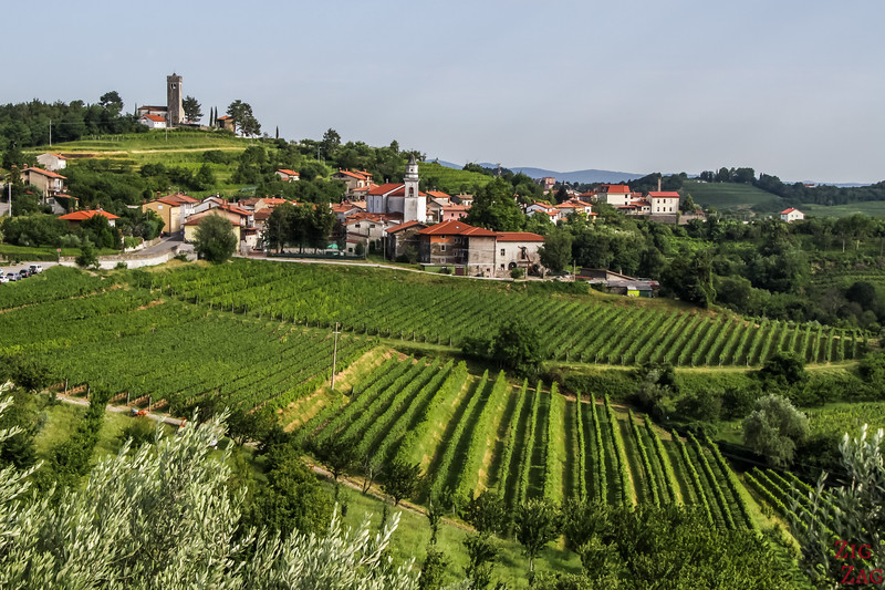 Slovenia off the beaten path - Brda region 1