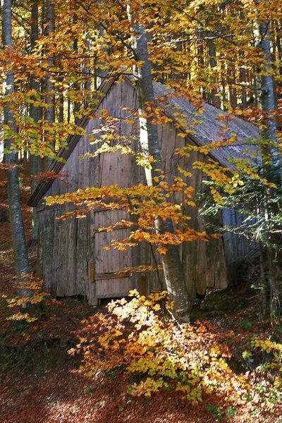 Autumn retreat, slovenia