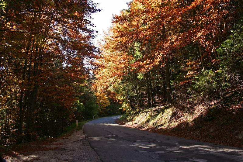 fall in Slovenia
