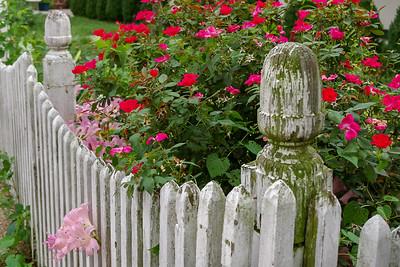 saint_genevieve_garden_08-10