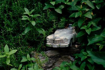 toy_car+garden_06-07