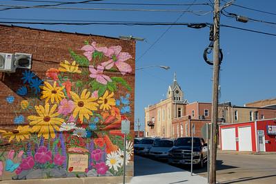 flowers_mural-t0773