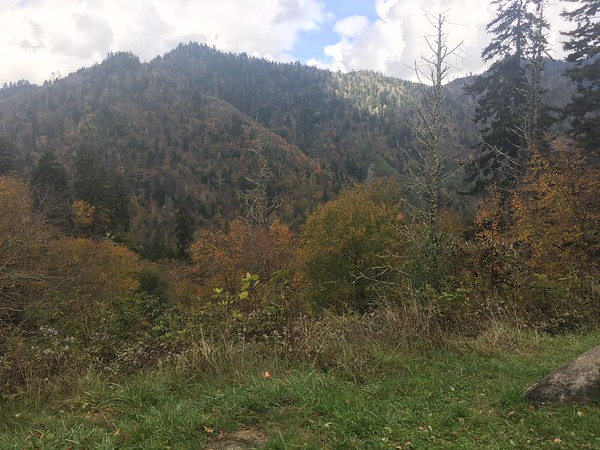 Smokey vistas
