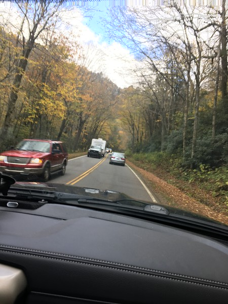 Fall colors and traffic