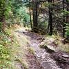 Appalachian trail segment