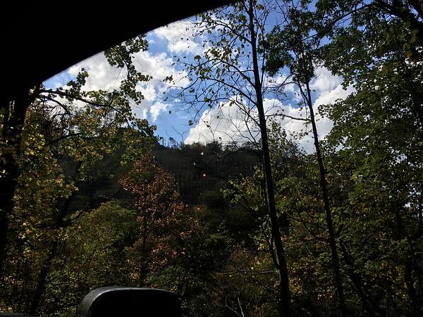 Auto views
