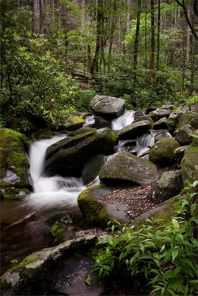 Stream at Roaring Fork <br /> <br /> May 2012