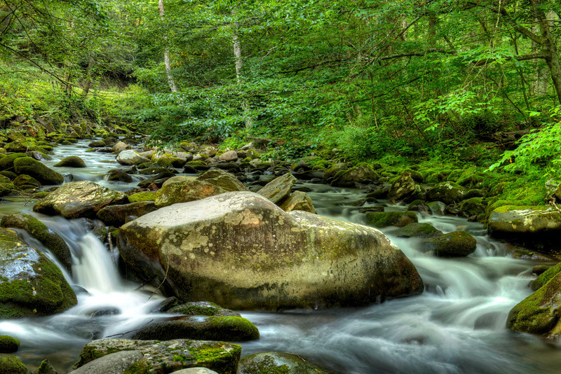 A little stream along the parkway heading towards Cherokee NC.