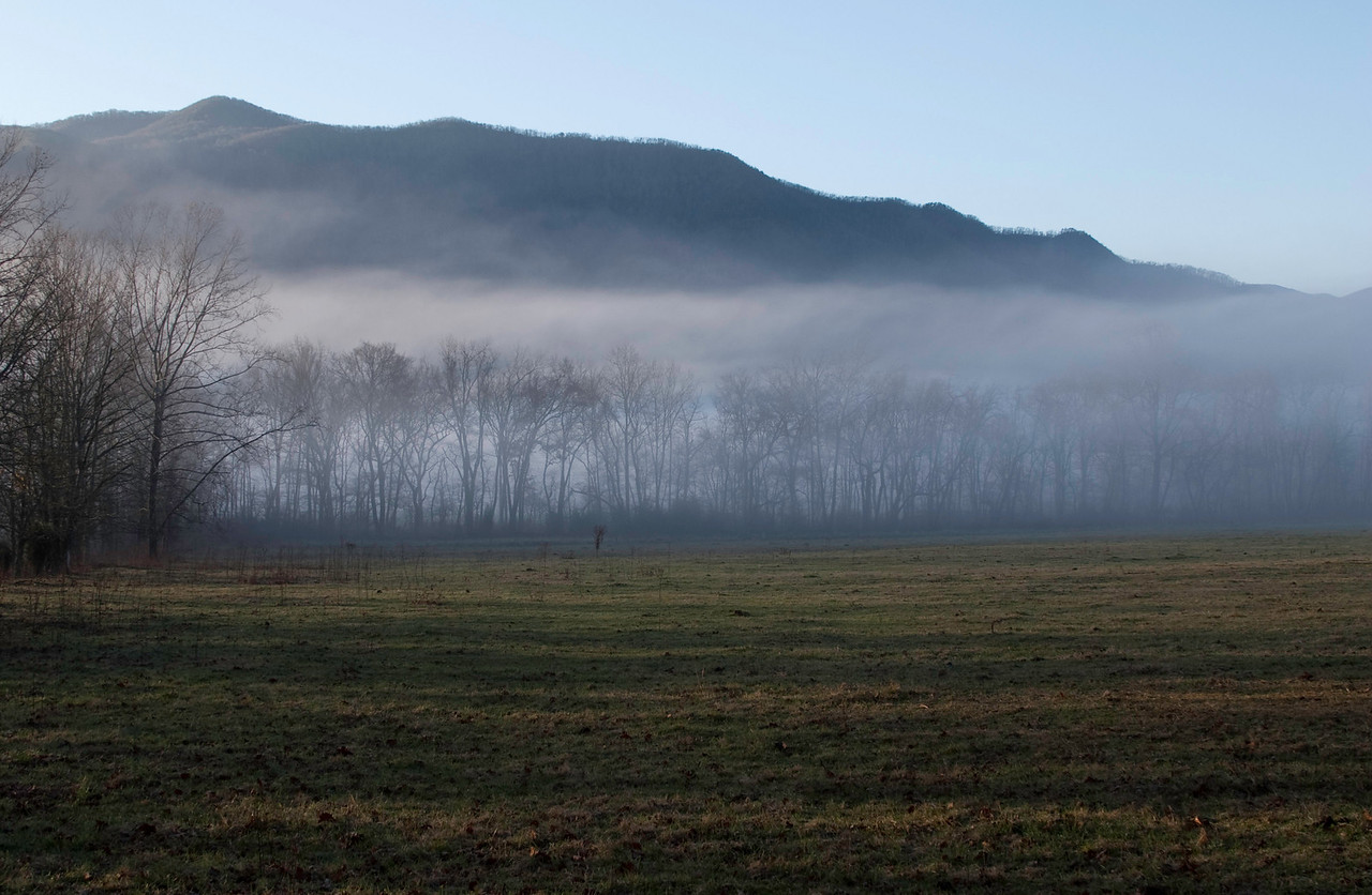 Early morning fog, Cades Cove