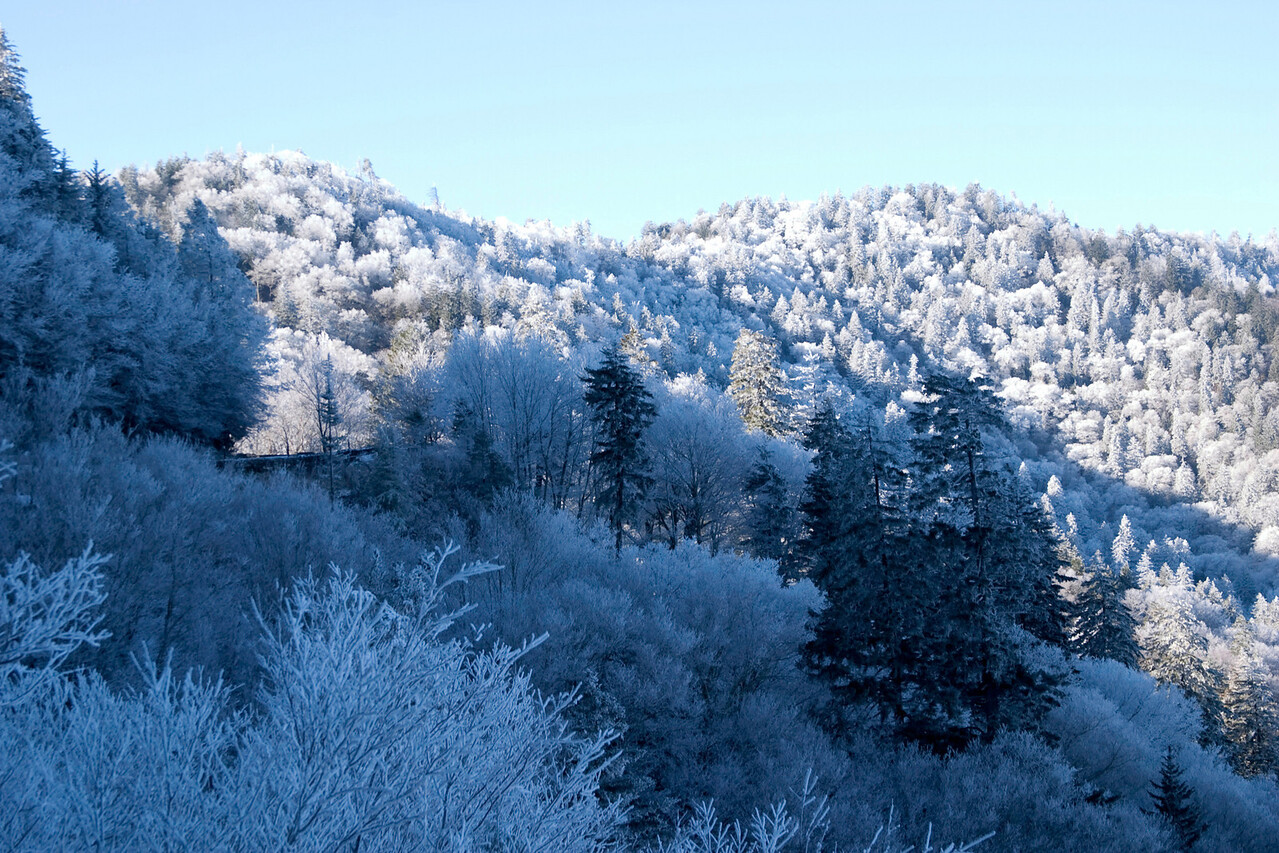 Snow, near Newfound Gap, November 27