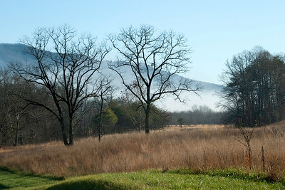 Morning fog, Cades Cove