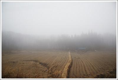 The closer we got to Nikko, the denser the fog became.