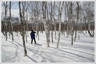 Snowshoeing in Nikko