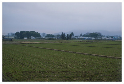 Farmland, taken from the train.