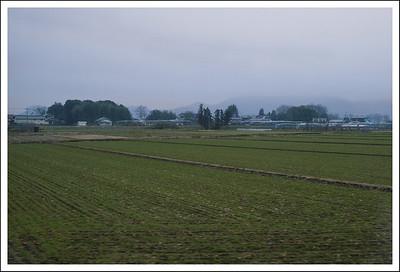 Farmland, taken from the train.