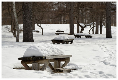 We had lunch at this picnic spot, on the only table that was cleared.