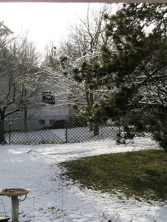 First snow in Gingins, Nov 2010