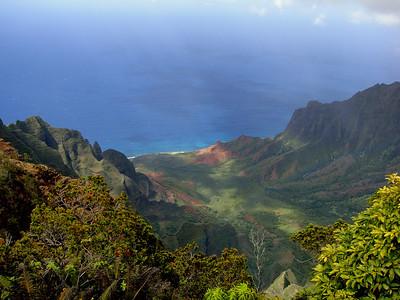 Kava Trails (Vanuatu, Fiji, Samoa, Hawai'i)